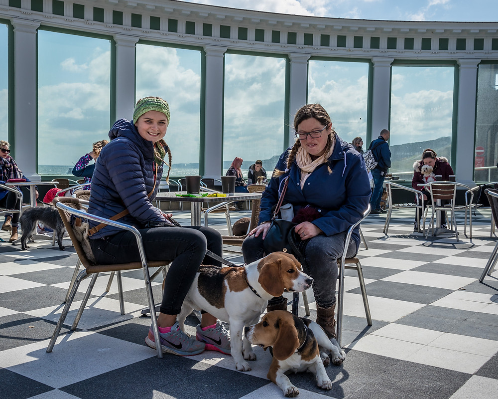 Two ladies with their dogs