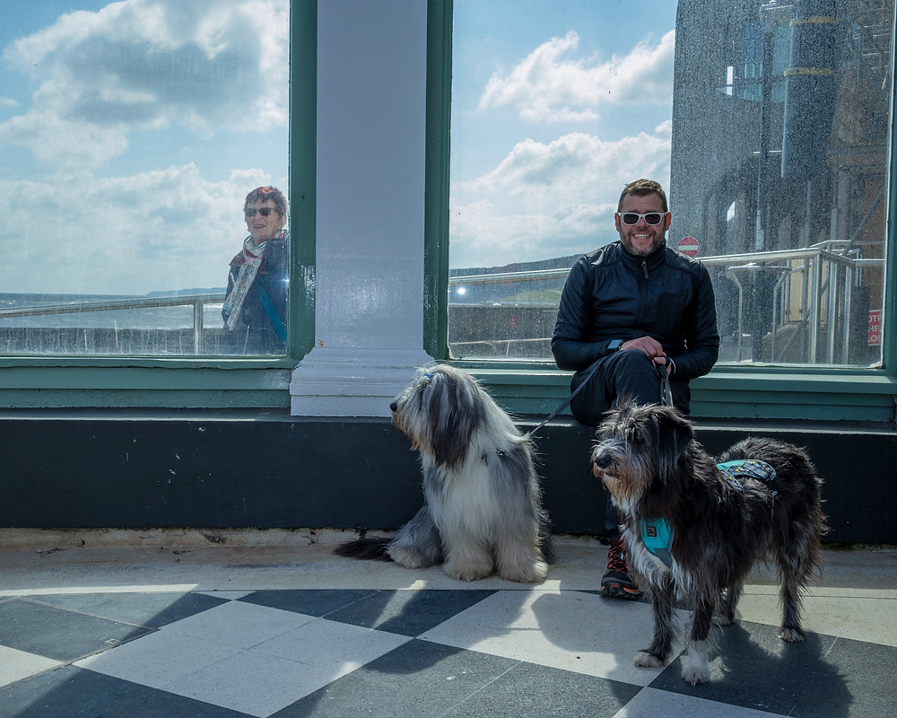 A man with sunshades and two fluffy dogs