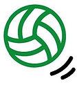 logo_brabo_edited.jpg