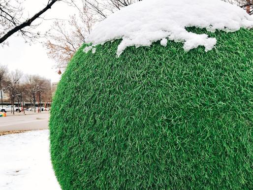 "Cool Dots looking pretty ""COOL"" in Winnipeg's first snowfall ❄️"