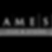 Amestile logo.png
