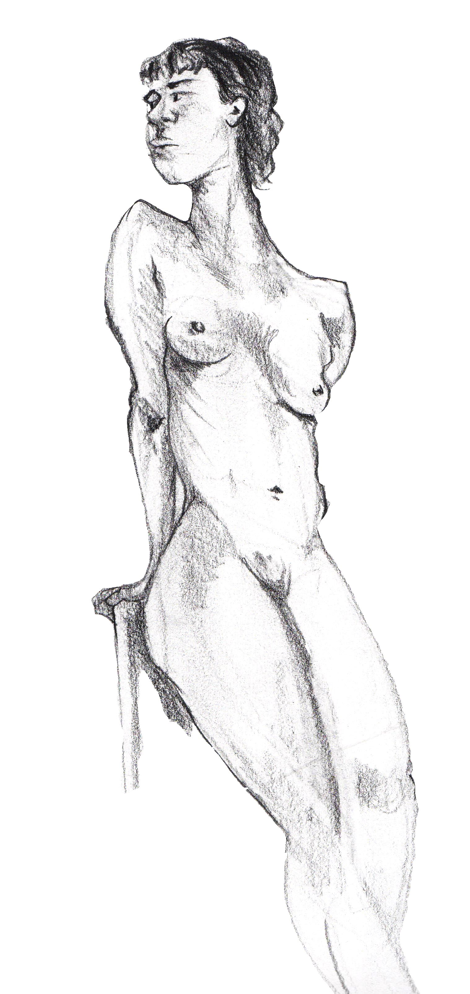 Dynamic Figure - Female
