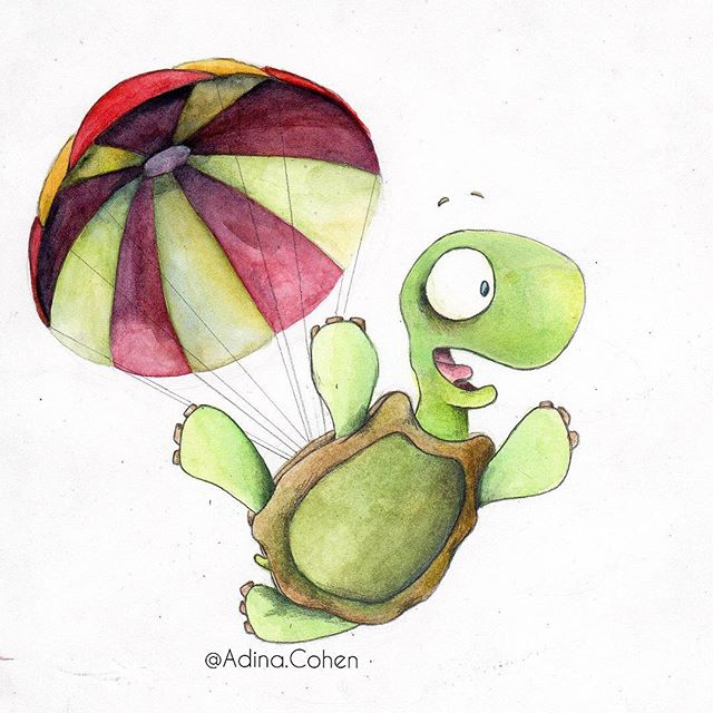 Falling Turtle_———————————_Hello Everyon