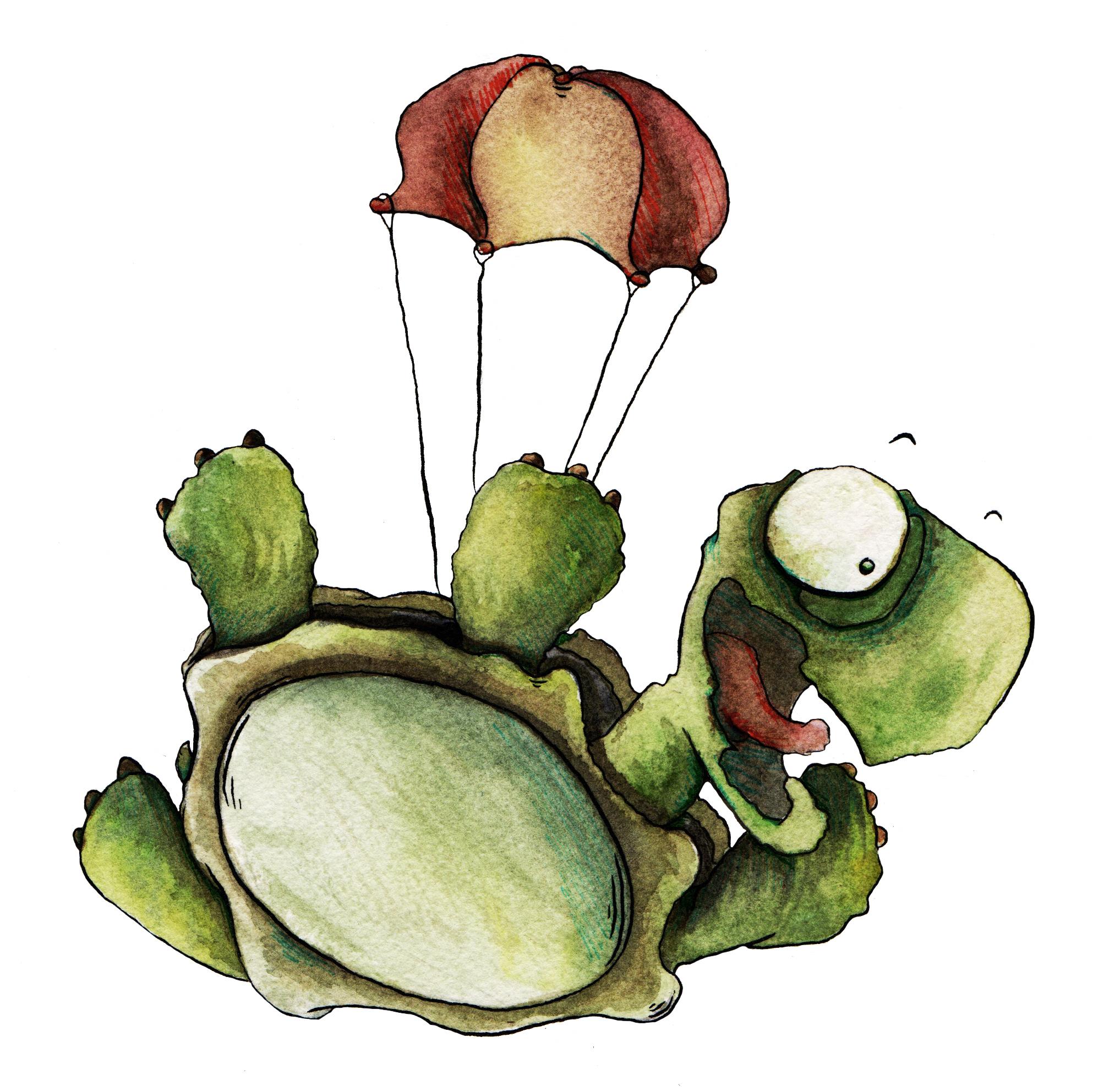 Falling Turtle