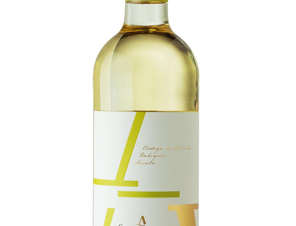 Vinho Branco 2018