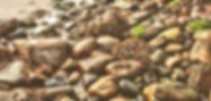 beach-192975_1280_edited_edited_edited.j
