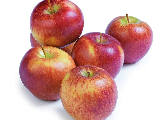 Local Cox Apples (per kg)