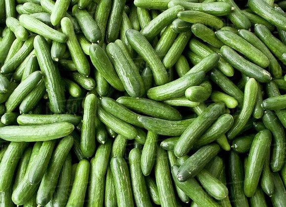 Mini Cucumbers X4