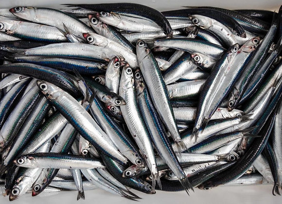 Anchovies (per 180g pack)
