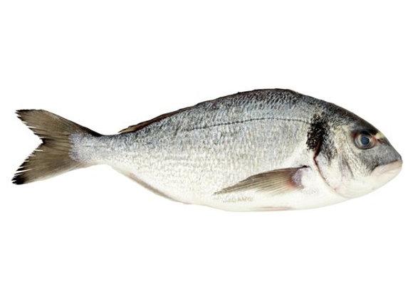 6-8  Seabream (per kg)