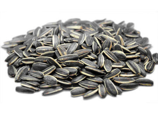 Sunflower Seed (400g)