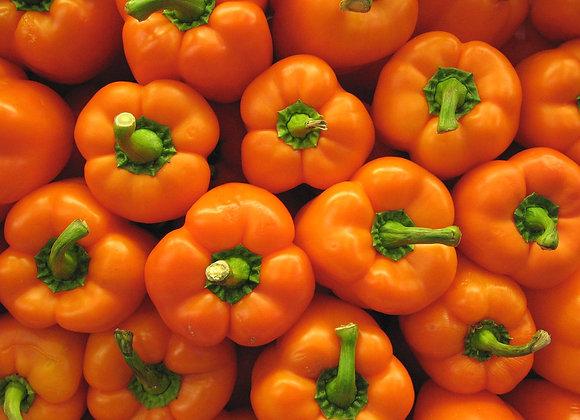 Orange Peppers (per kg)