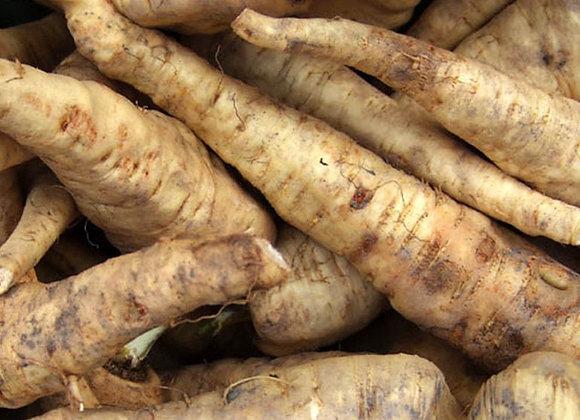 Horseradish  Root (per item)