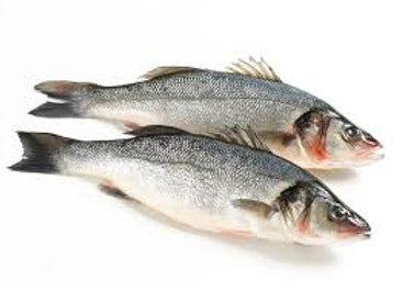 6-8 Seabass (per kg)
