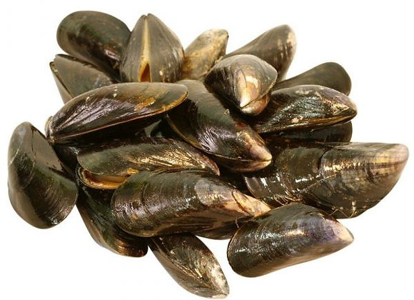 Scottish Mussels (per kg)