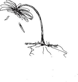 Susie Bush-Ramsey sketch