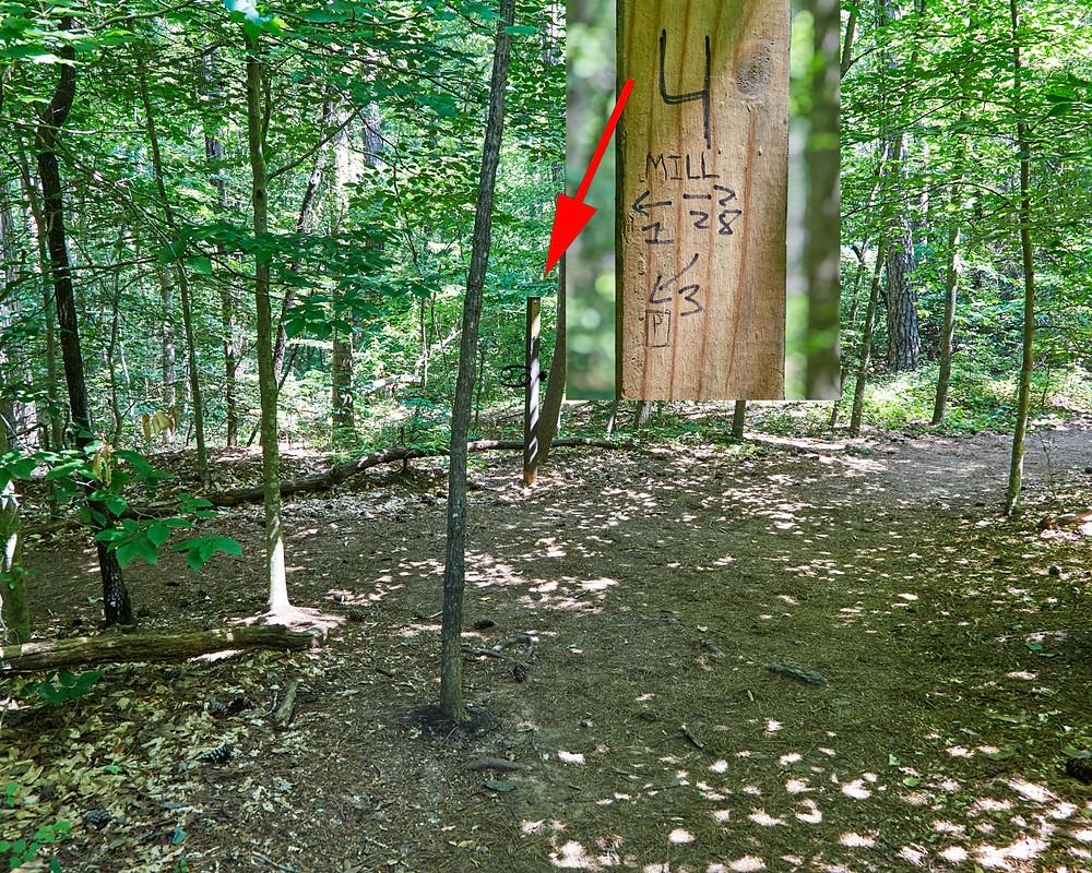 Sope Creek Mill Ruin Trail markings.