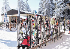 Ski Stand