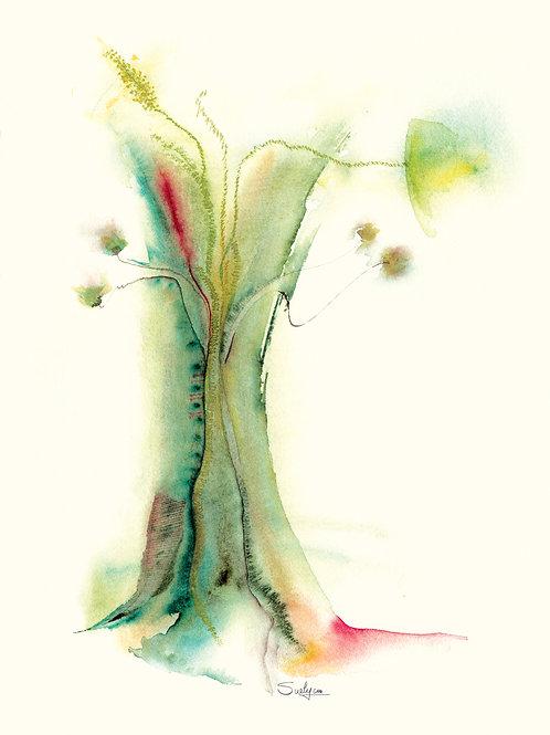Bosque 2 (cópia)