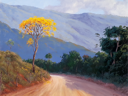 Estrada com Ipê (cópia)