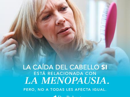 ¿Qué factores influyen en la caída y en la calidad del pelo durante la menopausia?