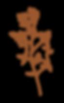 MBP -  Illustration 4_4x.png