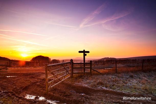 wiltshire-fields-sun.jpg