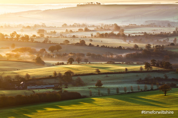 wiltshire-fields-fog.jpg