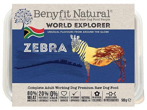 World Explorer Zebra