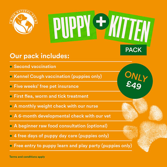 Offer (Puppy & Kitten) Square V2 Slide 2