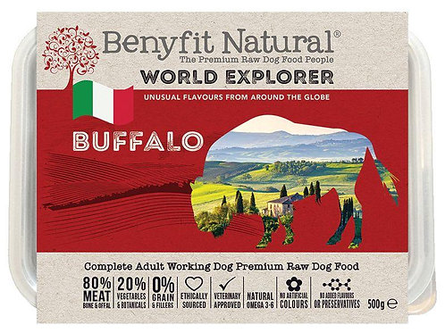 World Explorer Buffalo