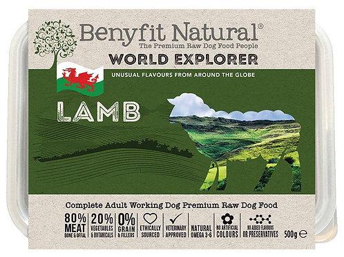 World Explorer Lamb