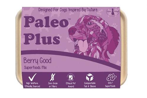 Paleo Plus Berry Good 500 G