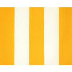 Bold in yellow stripe-outdoor-limited quantities