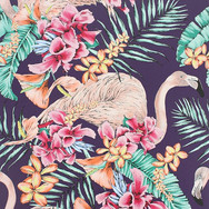 Flamingo Club 06