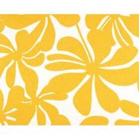 Yellow flowers-outdoor