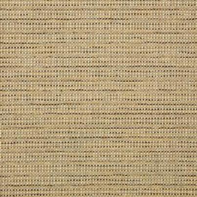 42066-0000 Sparrow