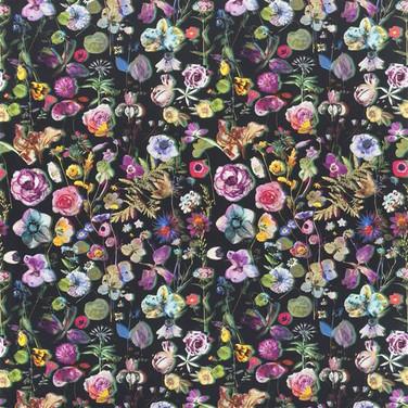 Herbarium - Crepuscule