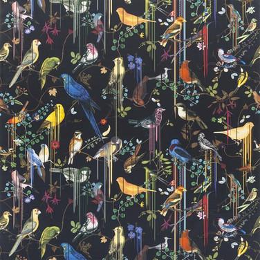 Birds Sinfonia - Crepuscule