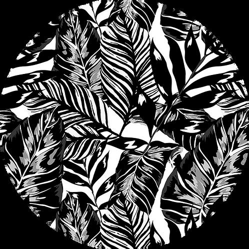 Palm Leaf - Black & White