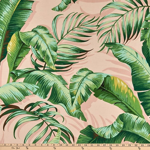 Fantastic outdoor-Palms-limited quantities