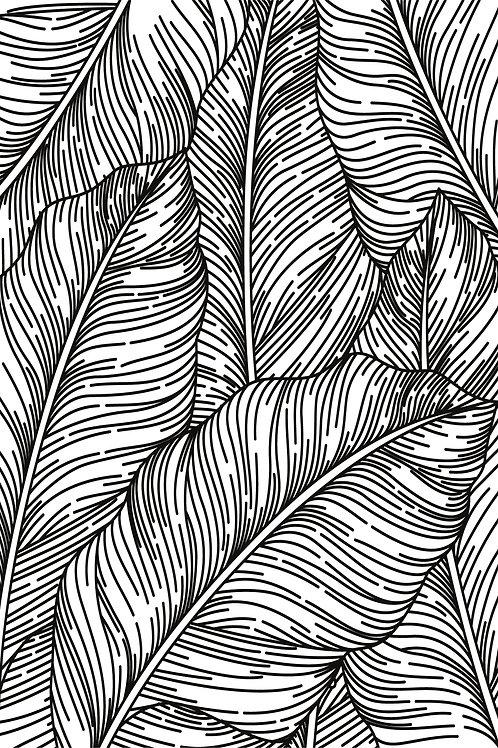 Banana Leaf - B&W