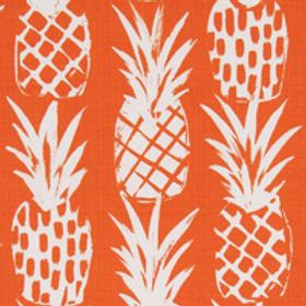 Classic pineapples orange-outdoor