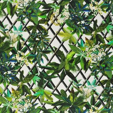 Canopy - Malachite