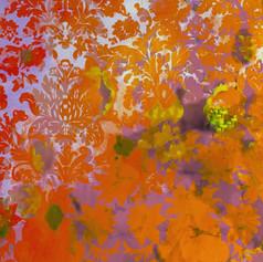 Colour Crash - Saffron Damask