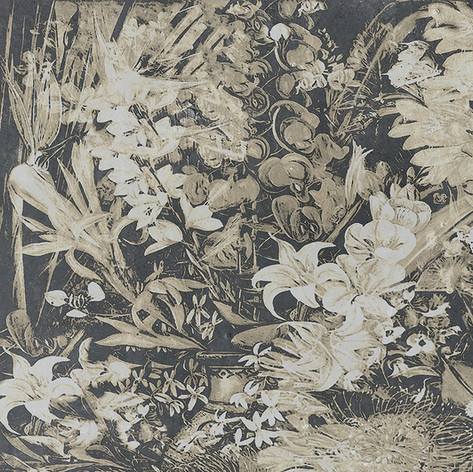 Wildflowers - Chalky