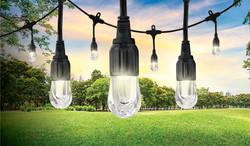 LED Cafe' Lights