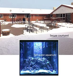 Facilities_Courtyard_Aquarium.jpg