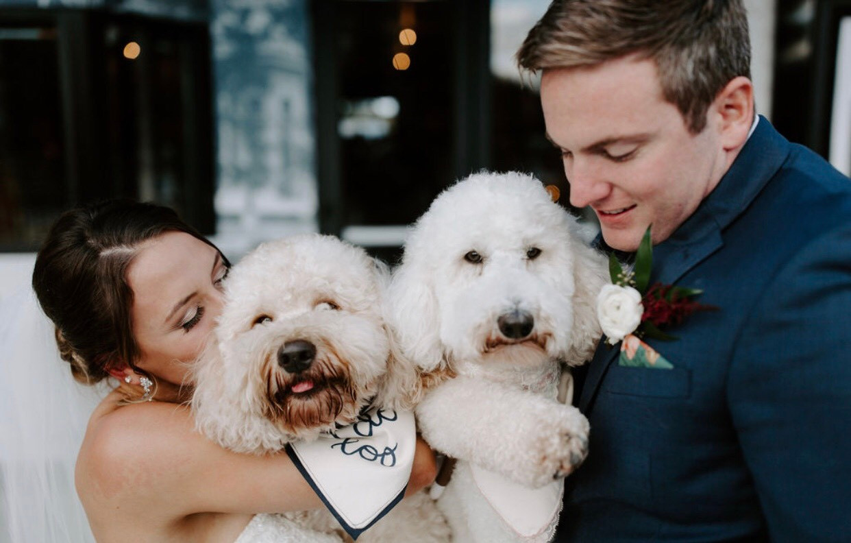 Pet Handling services wedding day
