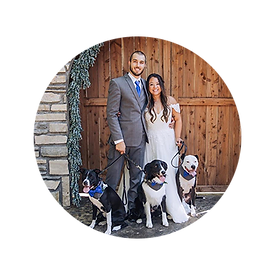 Wedding Pet Party.png